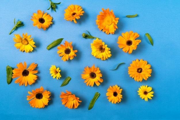 青に分離された黄色の花と花柄。