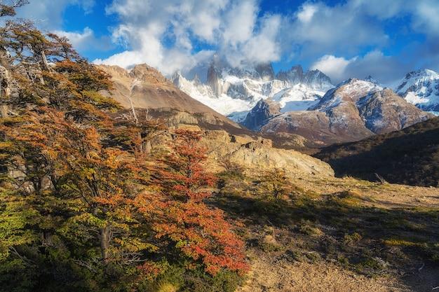 Национальный парк лос гласиарес, провинция санта круз, патагония, аргентина, гора фитц рой.