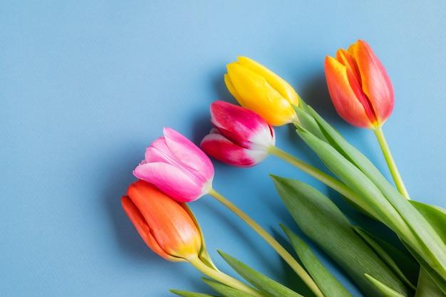 青色の背景に春のチューリップの花の花束。フラット横たわっていた、スペースをコピーします。
