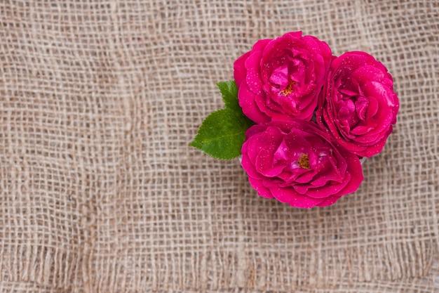 Цветет красные розы в чашке на предпосылке ткани. плоская планировка, вид сверху, цветочный фон.