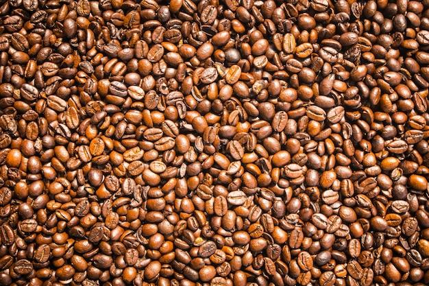 茶色のコーヒー豆と種