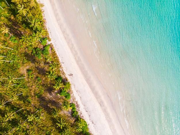 ココヤシのヤシの木を持つビーチと海の美しい航空写真