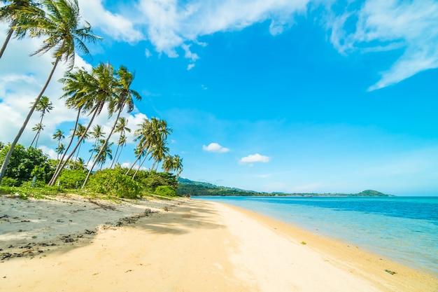 パラダイス島のココナッツパームツリーを持つ美しいトロピカルビーチと海