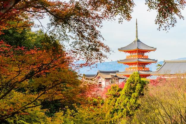 Храм киёмидзу дэра в киото в японии