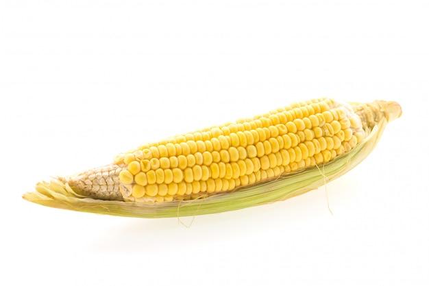 Изолированная кукуруза