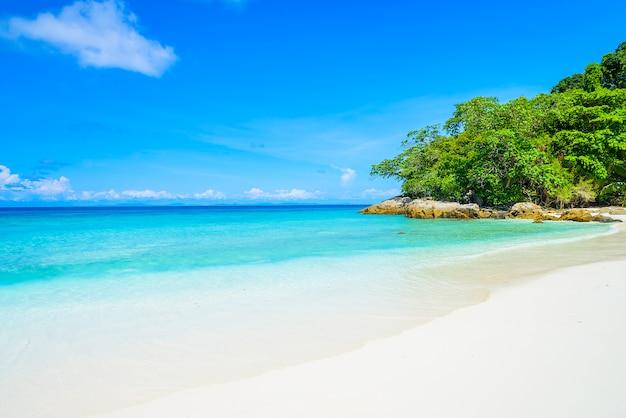 美しいトロピカルビーチ