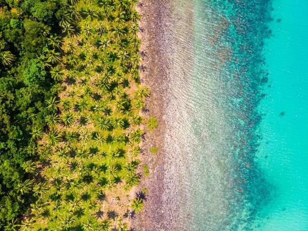 ココヤシの木とビーチと海の美しい空撮