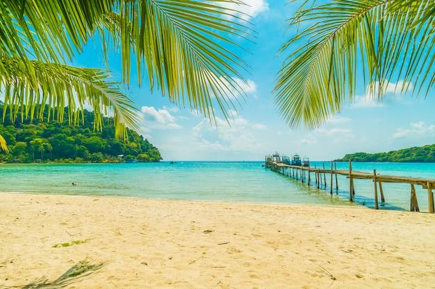 美しい熱帯のビーチとパラダイス島のヤシの木と海