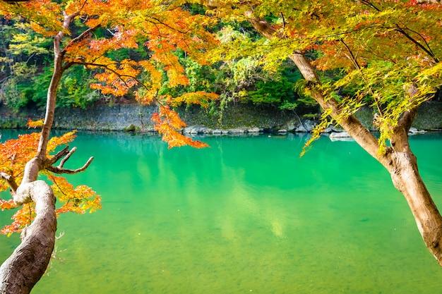 カエデの葉の木と湖の周りのボートで美しい嵐山川