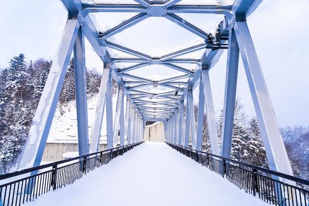 シラヒゲ滝と雪冬の橋の美しい屋外の自然風景