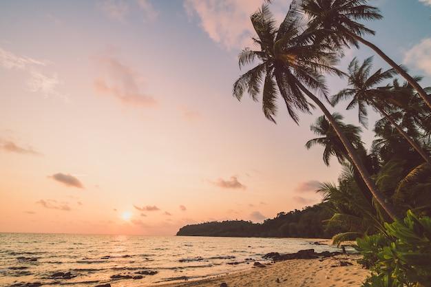 ビーチと海の美しい楽園の島