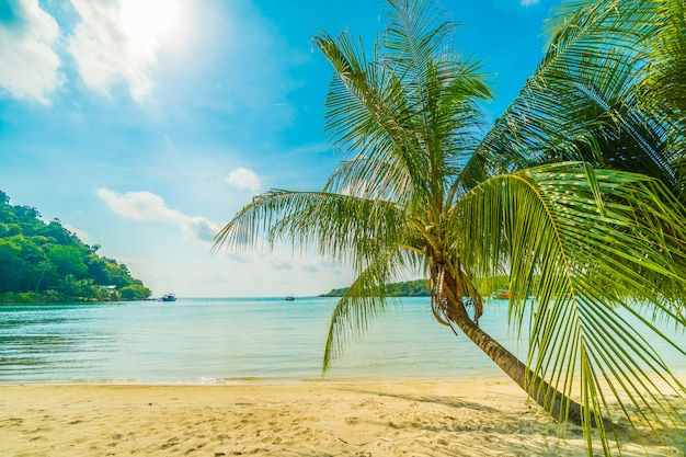 Красивый тропический пляж и море