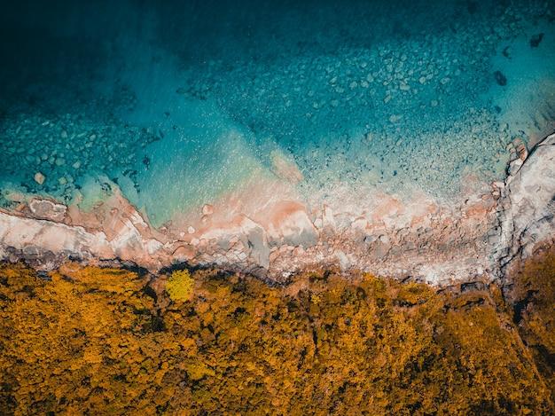 Красивая природа тропический пляж и море