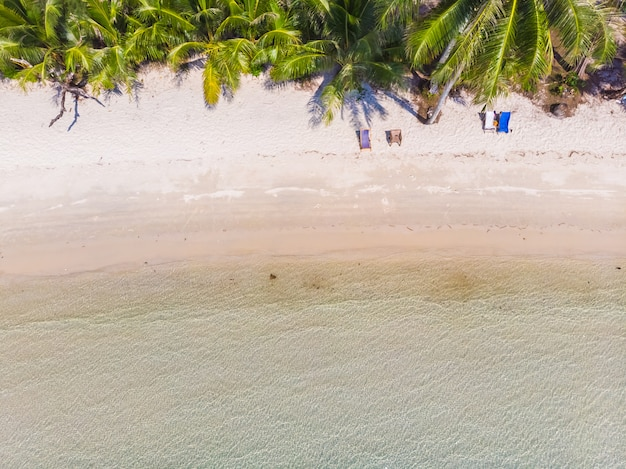 美しい自然の熱帯のビーチと海
