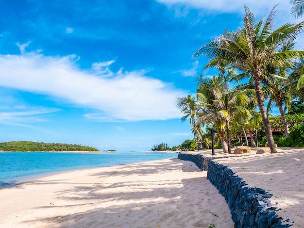Красивый тропический пляж и море с кокосовой пальмой