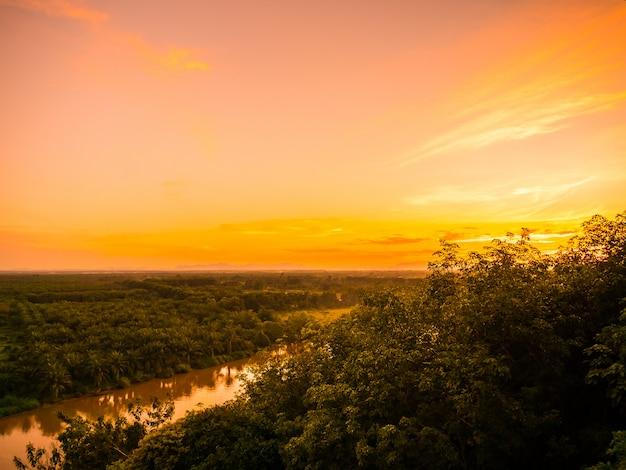 夕暮れの緑の森の風景と美しい空撮