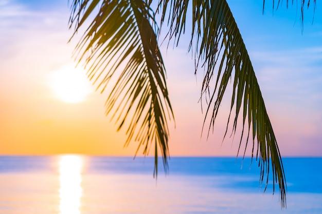Красивый открытый природный ландшафт моря и пляжа с кокосовой пальмой