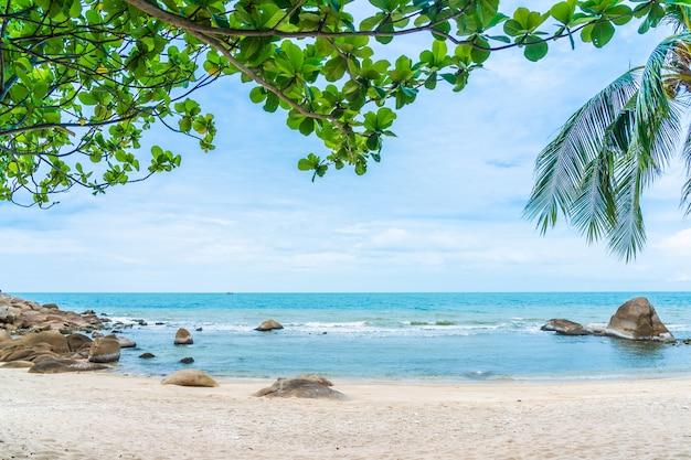 Красивый открытый тропический пляж моря вокруг острова самуи с кокосовой пальмой и другими