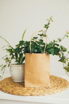 茶色とベージュの紙の買い物袋、モダンな明るい部屋でツタ植物、