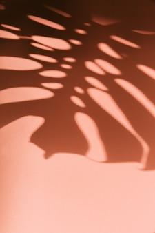 ピンクの壁に影ヤシの葉の抽象的な背景
