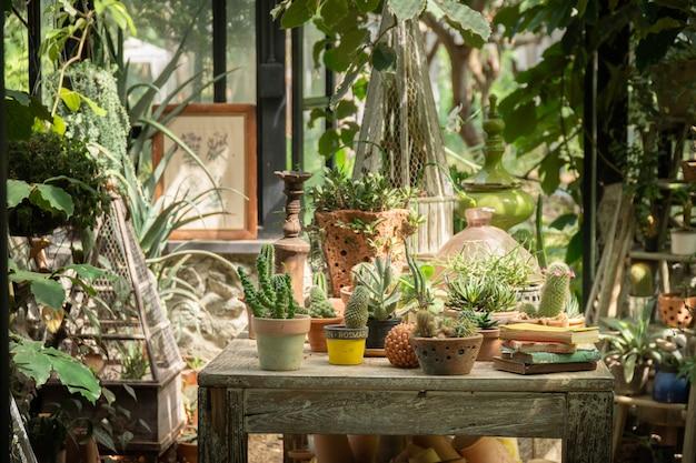 サボテンの植栽の成長のための温室。