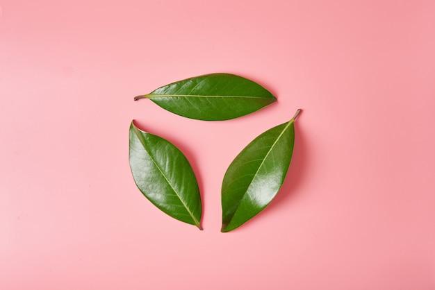 緑の葉のロゴリサイクルサインまたはマグノリアの葉で作られたリサイクルシンボルの形で