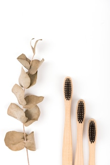 白い背景で隔離のガラスの歯ブラシのセット。環境に優しい竹。廃棄物ゼロ