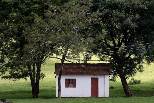 サンパウロ州の典型的な農場の施設
