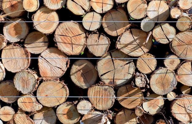 製材所、正面に木の幹の山のクローズアップ