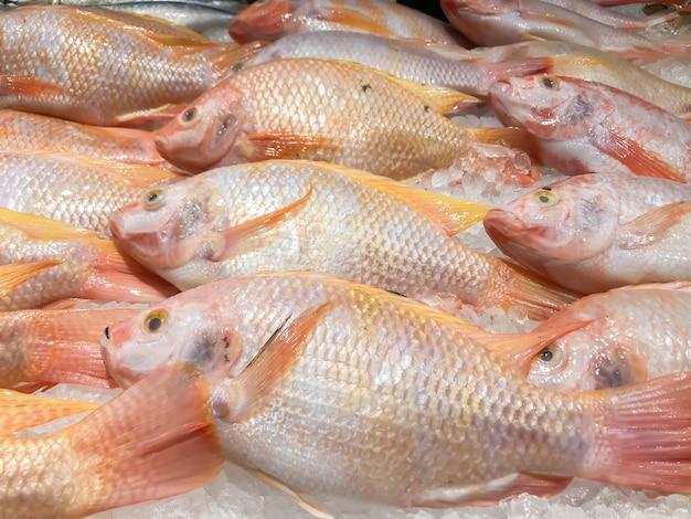 市場の氷棚の新鮮な魚