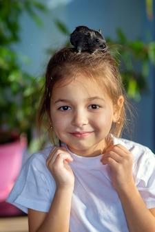 家にいる女の子がペットのモンゴルアレチネズミと遊んで、頭にのせます