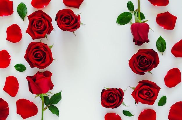 その花びらと葉と赤いバラは、サンバレンタインの日に正方形のスペースで白い背景に置きます