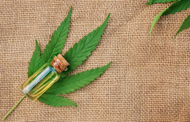 大麻ハーブと治療のための葉