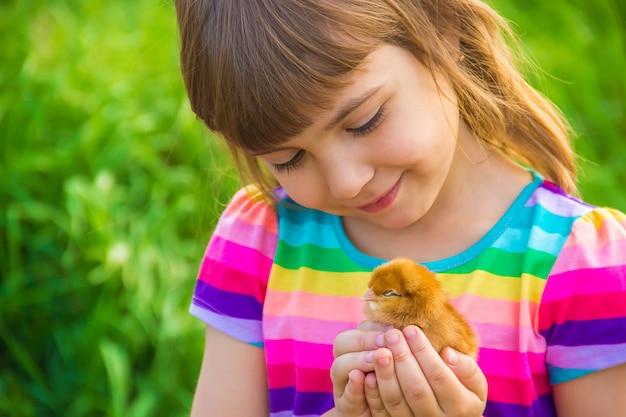手で鶏を持つ子供の女の子