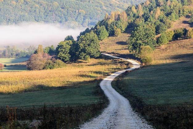田園地帯の景色、田園地帯の向こう側の森。田舎道。