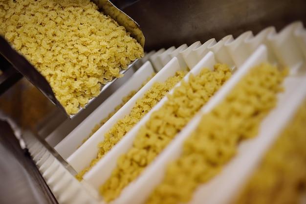 マカロニ生産のための食品加工工場。アニョロッティ