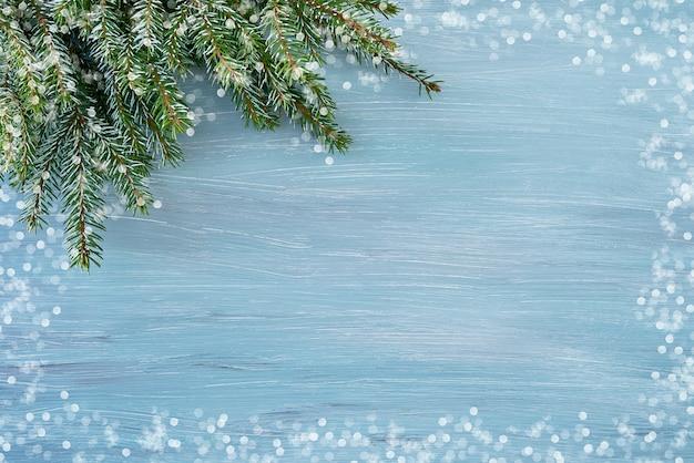 枝フレーム、冬