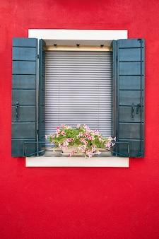 緑のシャッターと鍋にピンクの花を持つウィンドウ。イタリア、ベニス、ブラーノ