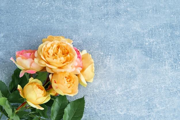 青の背景に美しい黄色ピンクのバラ。トップビュー、コピースペース。