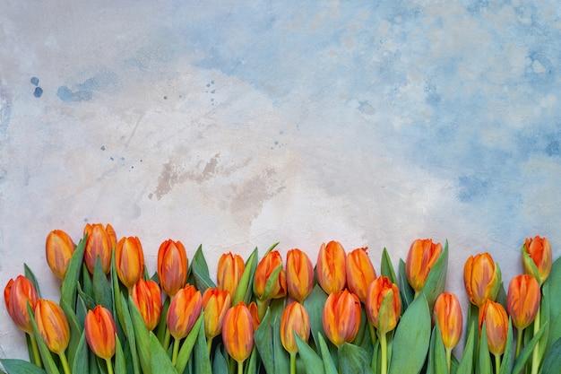 カラフルな水彩背景にオレンジ色のチューリップ。