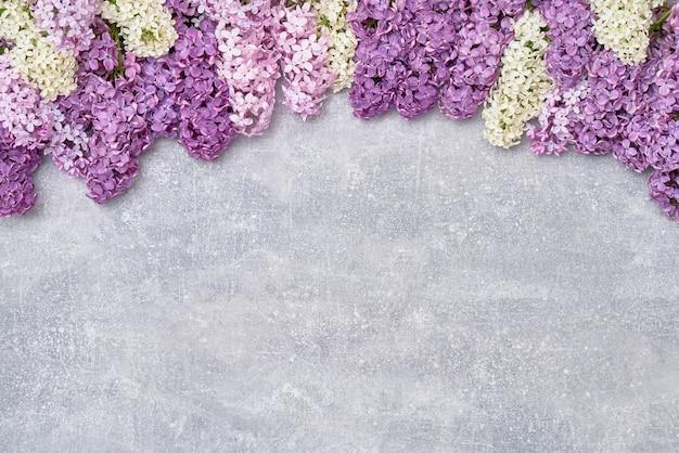 Весенние сиреневые цветы на сером фоне