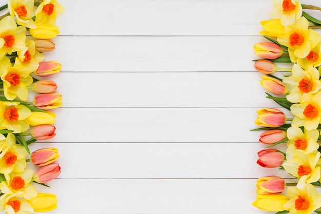 Весенний фон. тюльпаны и нарцисс на белом фоне деревянные. копировать пространство