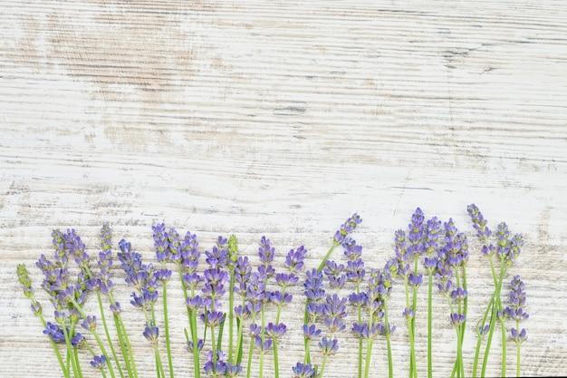 白い木製の背景にラベンダーの花。