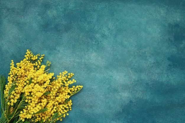 Мимоза цветы букет на зеленом фоне. копирование пространства, вид сверху.