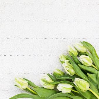 白いテーブルクロスの上の白いチューリップ