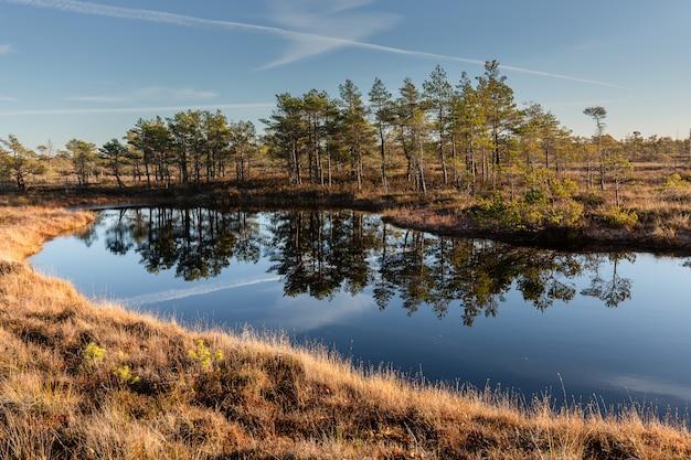 ラトビアのケメリ国立公園