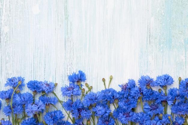 Синий василек границы на голубом фоне