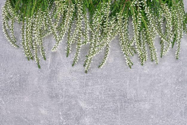 灰色のコンクリート背景に白の一般的なヘザーの境界線