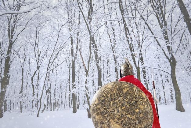 スパルタの戦士は冬の森を歩いています。