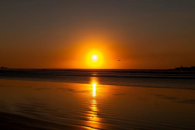 モロッコ。大西洋の海岸。レッジラ